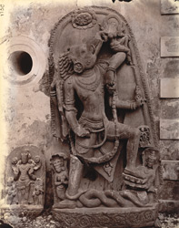 Sculptured slab of Aditya and Varahavatara photographed in front of the Bihar Museum.